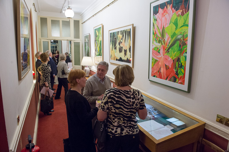 Vibrant Rhododendrons Exhibition Image